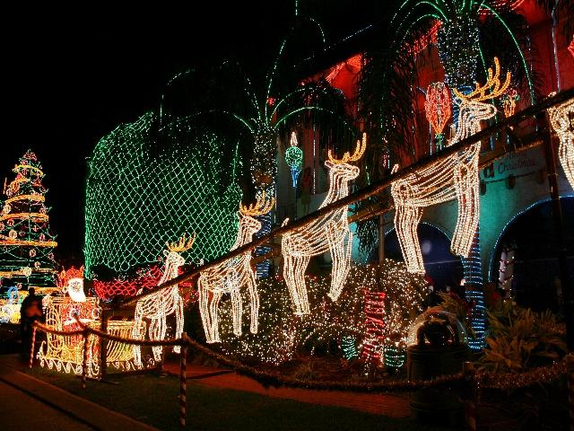 Aloha Copeland_2367 - Aloha Copeland - Final Christmas Light Display 2004 - AIPRESSNOLA